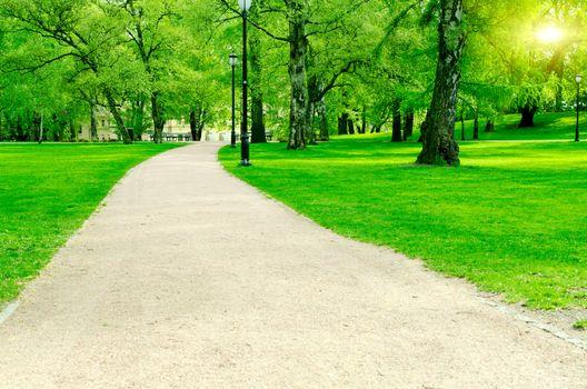 Pathway in city garden