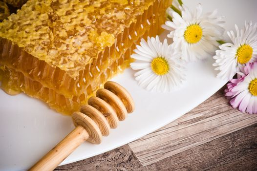 honeycomb with daisies on white plate