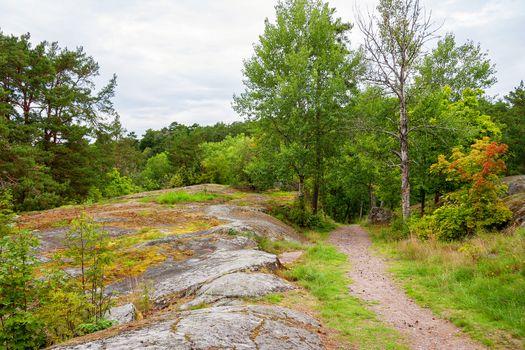 Path through forest. Sigtuna, Sweden