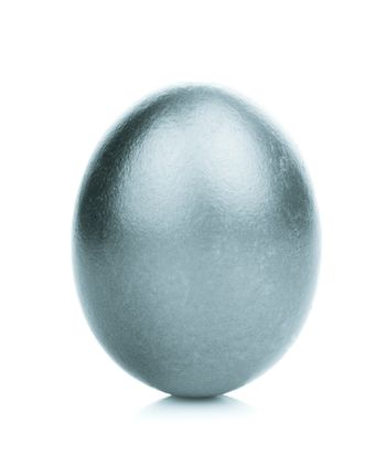One silver egg isolated on white background