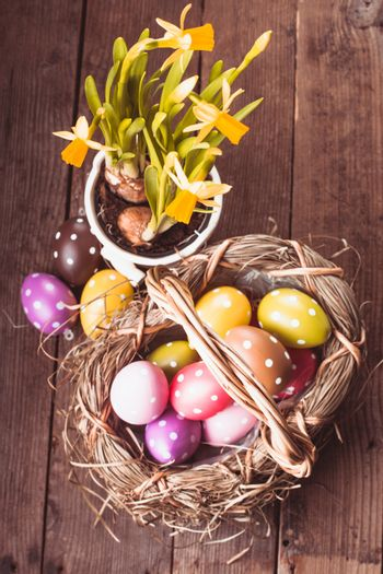 Colorful polka dot eggs in basket and daffodil flowers