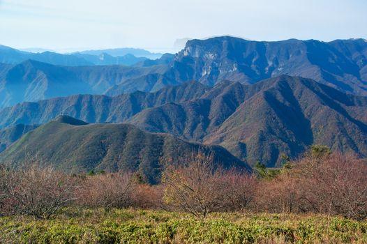 Mountain peaks. Tree. Clouds - Shennongjia beauty