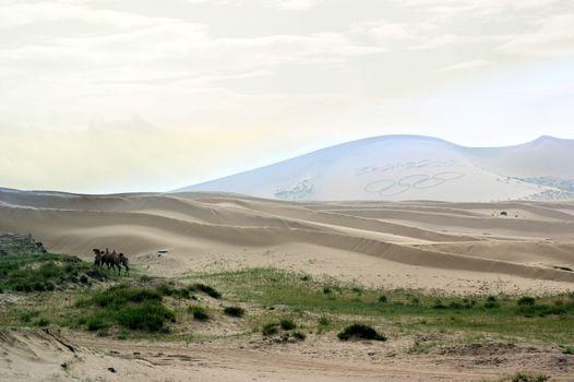 Sand Hill beside the Qinghai Lake
