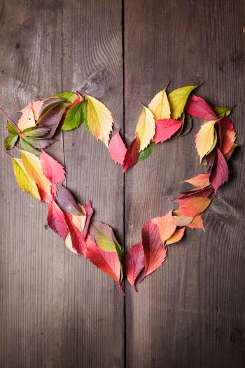 I love autumn - heart symbol from leaves