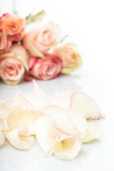 pink roses petals like a background closeup