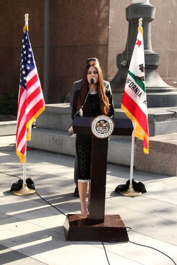 Kerri Kasem at the Kerri Kasem and Mike Gatto Press Conference to announce legislation to protect the rights of children to have access to ailing parents, Los Angeles Superior Court, Los Angeles, CA 02-20-14/ImageCollect
