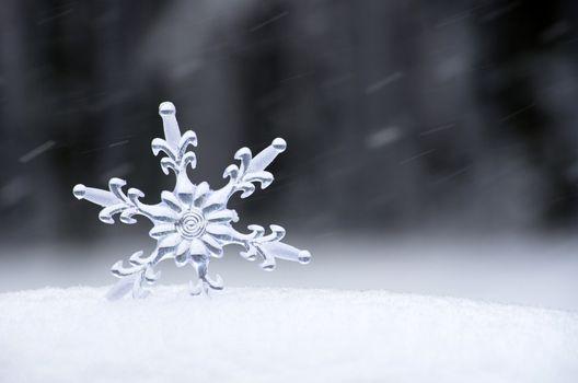 Snowflake in a white snow