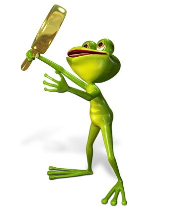 3d illustration merry green frog with magnifying