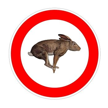 Hare speed limit