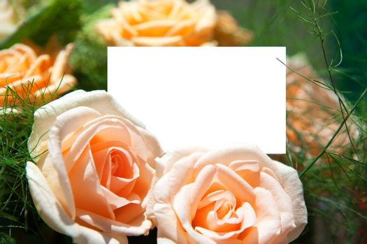 blank of paper and flowers
