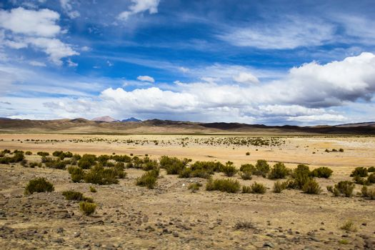 A desert on the altiplano of the andes in Bolivia