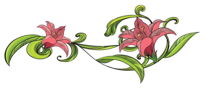 Illustration of a vine flower border on a white background