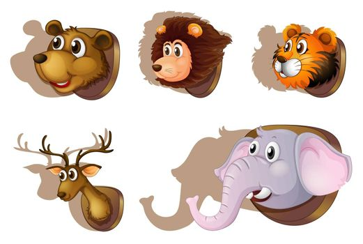 Illustration of the five stuffed heads of animals on a white background