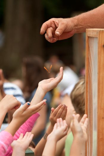 Youthful Hands Reach For A Butterfly Being Released At Festival