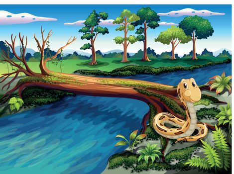 A snake at the riverbank
