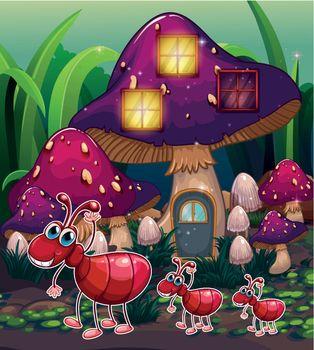 A colony of ants near the mushroom house