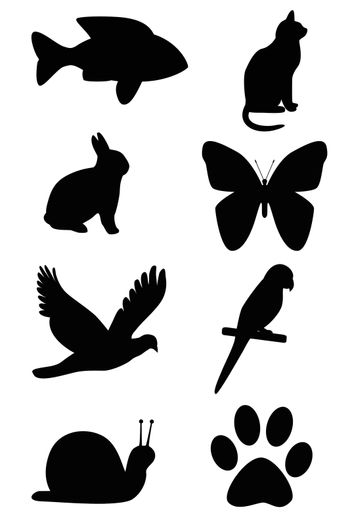The picture Silhouette of animals on white background.