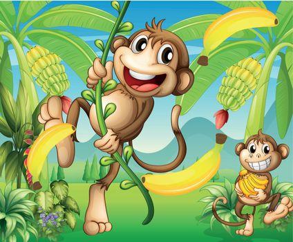 Illustration of two monkeys near the banana plant