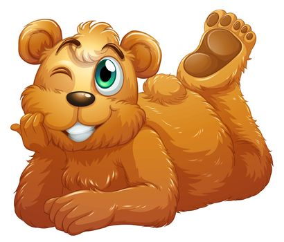 Illustration of a brown bear on a white background