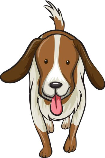 Illustration of a dog on a white background