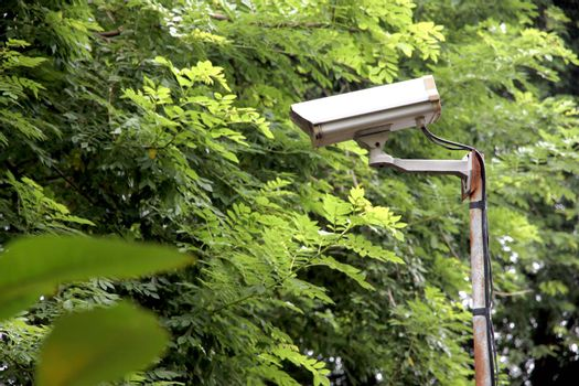 CCTV camera in the park in a security system.