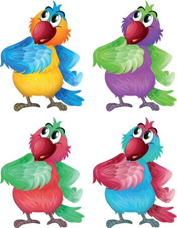 Illustration of the four colorful parrots on a white background