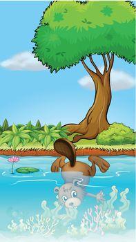 Illustration of a beaver diving underwater