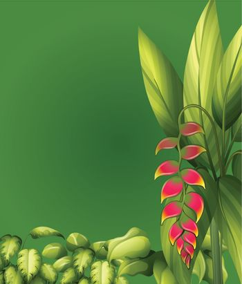 Illustration of plants with elliptic leaves on a green background