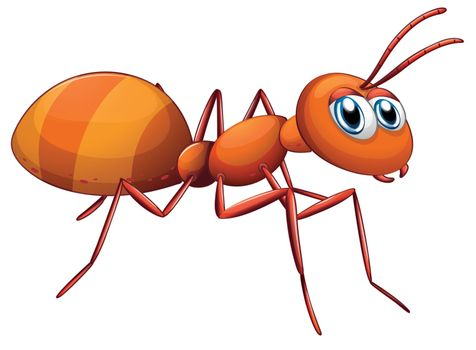 Illustration of a big ant on a white background