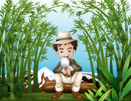 Illustration of a rainforest with a man holding a magnifying lens