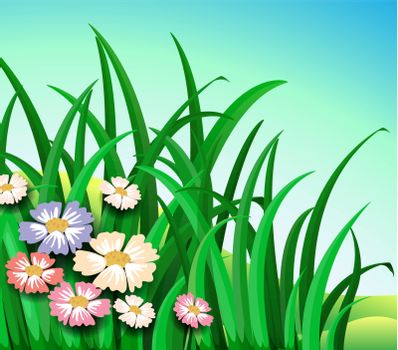 Illustration of the green plants with colorful flowers
