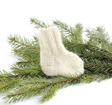 baby knitted woolen sock near spruce branches