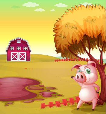 Illustration of a pig pointing the barn at the pig farm