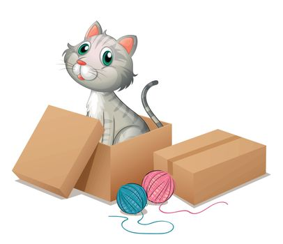 Illustration of a cat inside the box on a white background