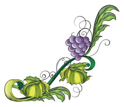 Illustration of a grape vine border on a white background