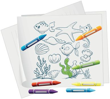 Illustration of a paper with a drawing of sea creatures and crayons on a white background
