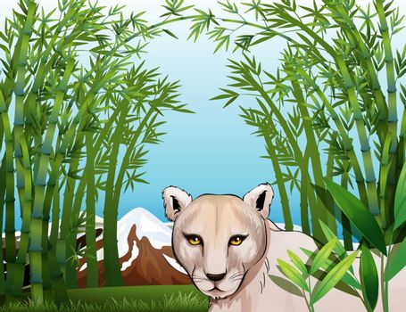 Illustration of a scary tiger at the bamboo forest