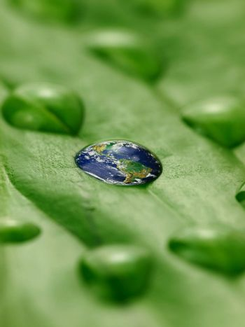 earth in water drops on a green leaf
