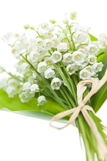 Lily of the valley flowers bouquet isolated on white background