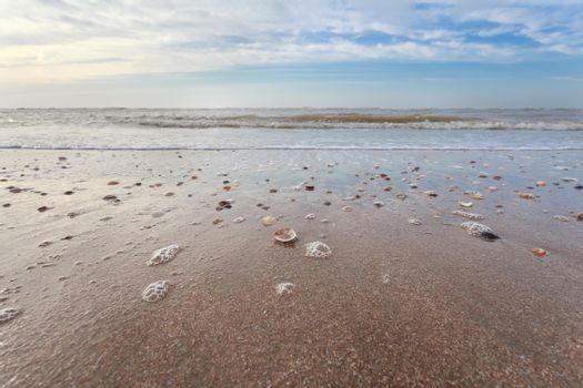 sand beach at low tide on North sea