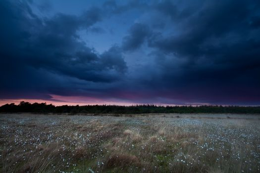 dramatic storm sky over marsh at sunset