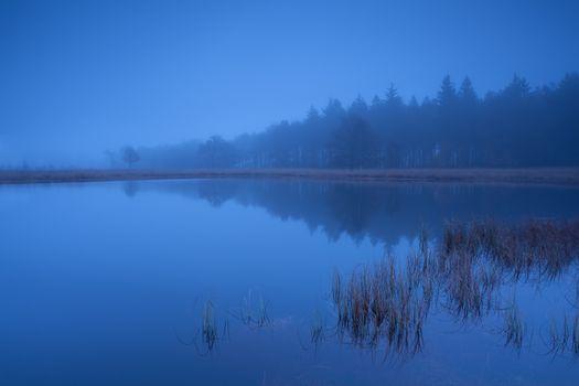 foggy dusk on lake