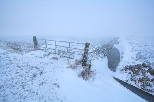 misty frosty morning on Dutch farmland