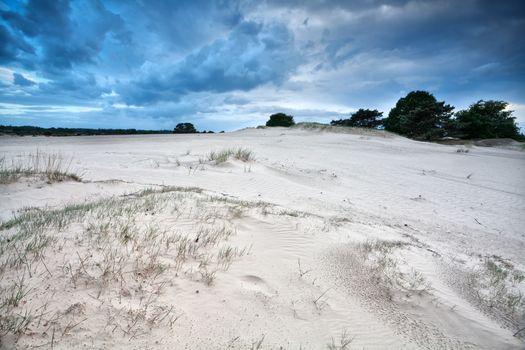 wind texture on sand dunes