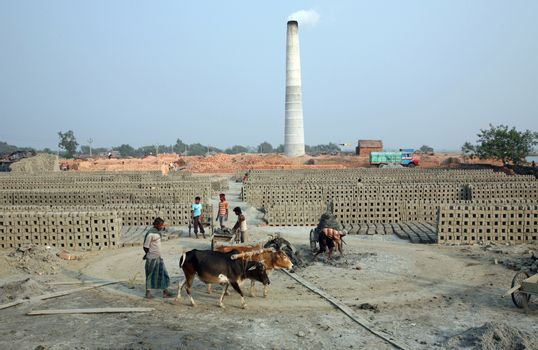 A Brickfield is a large landed area, used for manufacturing bricks from mud, soil, clay and sand. Tools and machines for making bricks are very rudimentary, January 16, 2009 in Sarberia, West Bengal, India.
