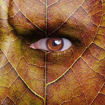 face with autumn leaf texture