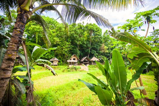 Philippine traditional village