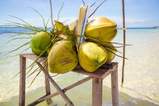 Bunch of coconuts on a tropical island