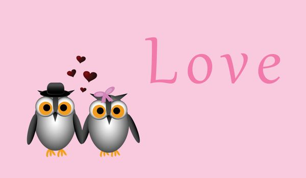 Male owl and female owl holding wings in this Valentine inspired vector. Layered File. EPS 8.