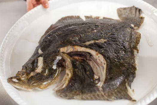 Piece of fresh fish fillet